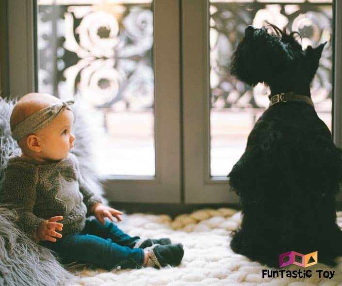 Image of baby looking at black dog