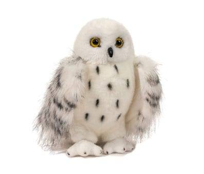 Product image of Douglas Wizard Snowy Owl Plush